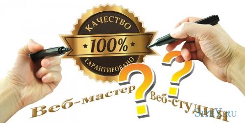Частный веб-мастер или веб-студия - выбор специалиста.